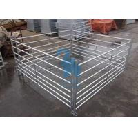 Buy cheap Free Standing Livestock Metal Fence Panels , Goat Corral Panels With 6pcs Pole from wholesalers