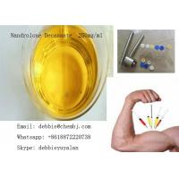 Buy cheap CAS 360-70-3 Injectable Anabolic Steroids Liquild Nandrolone Decanoate , 250mg/ml Oils for Muscle Building from wholesalers