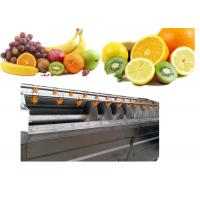 Buy cheap High Output Vegetable Grading Equipment , Fruit And Vegetable Washer Machine from wholesalers