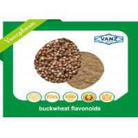 Buy cheap Brown Yellow Fine Powder Natural Herbal Extracts Reduce Blood Sugar Buckwheat Seed Extract product