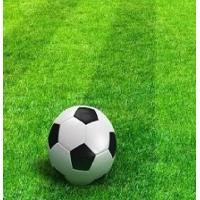 Buy cheap low price top quality 50mm height 11000 Dtex green Football artificial turf/ Synthetic grass or lawn from wholesalers