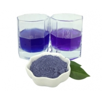 Quality Natural Pigment Superfood Butterfly Pea Extract Powder Bulk MOQ 1KG for sale