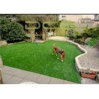 Buy cheap 10500 Dtex Commercial Artificial Putting Green Turf 9800 Dtex Easy Care from wholesalers