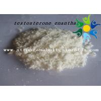 Buy cheap Raw Test E Powder Testosterone Anabolic Steroid Testosterone Enanthate CAS 315-37-7 from Wholesalers