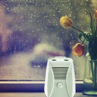 Buy cheap Slient Mini DC 6V Home Air Purifier with Dual Ion and Ozone Function from wholesalers