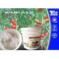 Buy cheap Aubergine Granule Systemic Fungicides With Protective And Curative Action from wholesalers