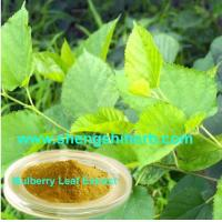 Buy cheap Mulberry Leaf Extract product
