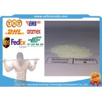Buy cheap White Powder Boldenone Steroids Cypionate for Growth Muscle Bodybuilding from wholesalers