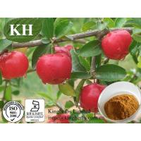 Buy cheap Acerola Cherry Extract from wholesalers