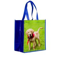 Buy cheap Recyclable Laminated Non Woven Bag Laminated Gift Shopping Bag Eco Friendly from wholesalers