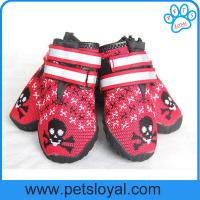 Buy cheap Breathable Dog Shoes Soft Knitting Paw Protector with Reflective Velcro China Manufacturer from wholesalers