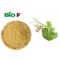 Buy cheap Gotu Kola Extract Powdered Herbal Extract Centella Asiatica Extract For Health from wholesalers