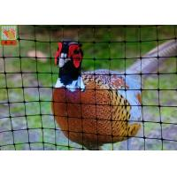 Buy cheap Pheasant Fence Net, Plastic Poultry Netting, Chicken Netting Fence, Eco Friendly, Black Color from wholesalers