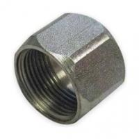 Buy cheap BSP BSPT Cap Nut Hydraulic Adaptor Fittings Color Zinc Plating from wholesalers