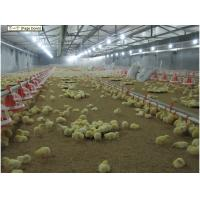 Buy cheap plastic chicken poultry equipment floor raised from wholesalers
