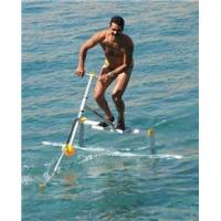 Buy cheap Exciting Aqua Skipper, Inflatable Water Sports Equipment Water Bird from wholesalers
