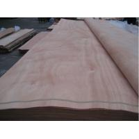 Buy cheap Natural wood veneer/ PLB veneer/ Gurjan veneer , Rotary cut natural wood veneer from wholesalers