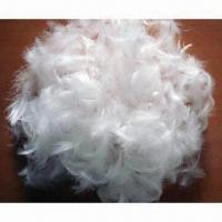 Buy cheap Washed duck/goose feathers, EN/CNS/JIS/FTC/AS standards from wholesalers