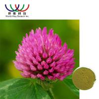Buy cheap Trifolium Pratense L Red Clover Extract Green Powder Relieve Menopausal Symtoms from wholesalers
