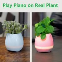 Buy cheap 2017 New Creative gift Play Piano on Real Plant Smart Music Flower pot with Bluetooth Speaker from wholesalers