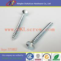 Buy cheap Clutch Head One Way Sheet Metal Screws from wholesalers