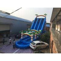 Buy cheap Coconut Tree Inflatable Double Water Slide With Splash Pool SGS Certificate from wholesalers
