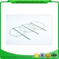 Buy cheap 3 Rings Green Garden Plant Supports , Circular Plant Supports Plastic Coated from wholesalers