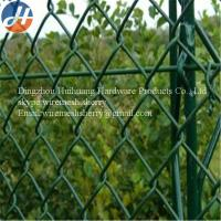 China Green chain link fence with lowest price on sale
