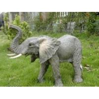 Buy cheap Wildlife Animal from wholesalers