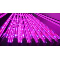 Buy cheap 1200mm Hydroponic Led Grow Light Tube For Vertical Farm , Water Resistance product