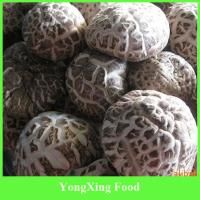 Buy cheap Whole Part and Cultivated Source Dried Mushroom from wholesalers