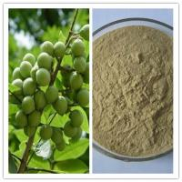 Buy cheap Natural Antibacterial Sterilization 40% 70% Saponin Sapindus Extract from wholesalers