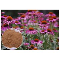 Buy cheap Echinacea Pururea Herbal Plant Extract Powder From Whole Herb Anti Virus from wholesalers