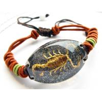 Quality Insect Bracelet(King Scorpion LC14) for sale