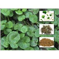 Buy cheap Gotu Kola Extract Powder Cosmetic Raw Materials Asiaticoside For Enhancing Immunity product