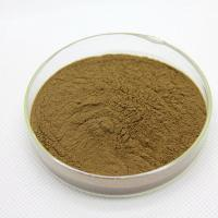 China Grape seed extract Antioxidant Dietary Supplement proanthocyanidin 25% for food additives on sale