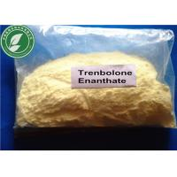 Buy cheap Bulking Steroid Powder Trenbolone Enanthate For Bodybuilding CAS 10161-33-8 from wholesalers