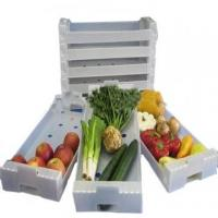 Buy cheap Anti - Corrosion Collapsible Plastic Moving Boxes Correx Box For Fresh Fruit from wholesalers