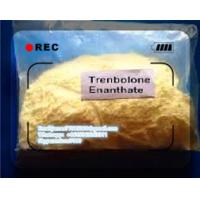Buy cheap Legit Injectable Anabolic Steroids Trenbolone Enanthate Injection 100 200mg/Ml 472 61 546 from wholesalers