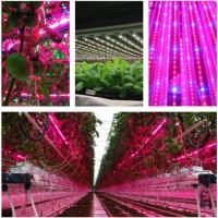 Buy cheap T8 4 Feet Hydroponic Led Grow LightsFor Vegetables / Flower , AC85-265V Input product