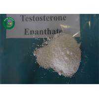 Buy cheap Muscle Growth Hormone Testosterone Enanthate 315-37-7 For Bodybuilder from wholesalers