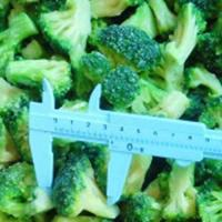 Buy cheap hot selling frozen iqf broccoli with best price from wholesalers