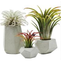 Buy cheap The creative personality of modern mini geometric DIY handmade vase custom concrete cement plant pot silicone mold product