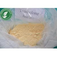 Buy cheap USP Standard Raw Steroid Powder Trenbolone Acetate For Weight Loss CAS 10161-34-9 from wholesalers