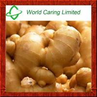 Buy cheap High Purity herbal ingredient pure natural tumeric Extract 95% Curcumin HPLC product