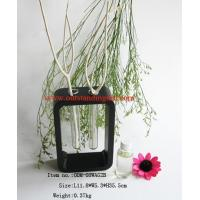 Home Decoration Reed Diffuser (ODM-08WAG2B)
