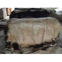 Buy cheap Wet salted cow skin, cow heads and animal skins,wet blue cow hides from wholesalers
