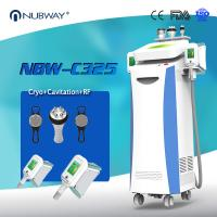Buy cheap 2 Cryo handles work simultaneously optional Cryolipolysis fat freeze body sculpting machine with 5 handles from wholesalers