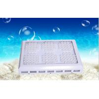 Buy cheap 600mA 378W marine aquarium LED lighting , IP55 White LED Fish Tank Lights from wholesalers