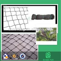 Buy cheap Low price & High quality Plastic knotted anti bird net pigeon netting suppliers(factory) from wholesalers